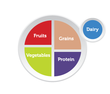 "Infographic showing a picture of a plate divided into four segments: One segment is labeled ""Fruits,"" one is labeled ""Grains,"" one is labeled ""Protein,"" and the last is labeled ""Vegetables."" Next to the plate is a circle (suggesting a cup or glass) that's labeled ""Dairy."""